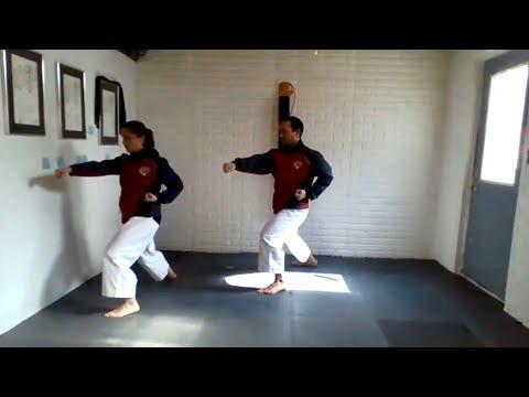 Karate Workout: stances and virtual partner drills