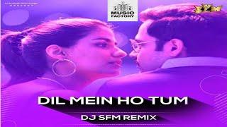 dil-mein-ho-tum---dj-s-f-m-remix