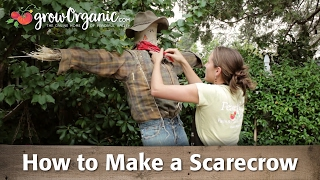 Video How to Make a Scarecrow - Step By Step Craft Project download MP3, 3GP, MP4, WEBM, AVI, FLV Januari 2018