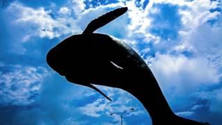 写真 画像調整 「小笠原父島のクジラのモニュメント」 八王子の写真館