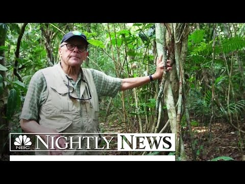 Protecting the Amazon: Tom Brokaw Explores World's Largest Rainforest | NBC Nightly News