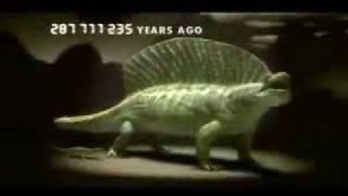 Вся эволюция за пять минут