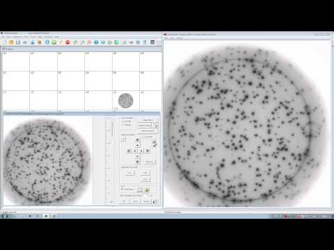 ELISpot Tutorial - How to Count Spots Using an AID ELISpot Reader