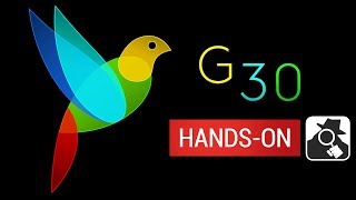 G30 - A MEMORY MAZE | Hands-On