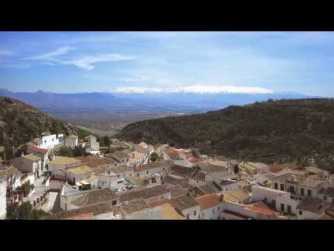 Castillo de Pinar Olive Oil - Granada, Spain