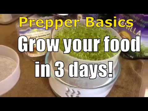 Prepper Basics: Grow Your Food In 3 Days