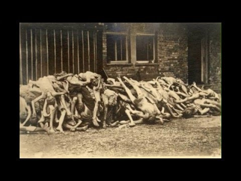 The Holocaust Pictures