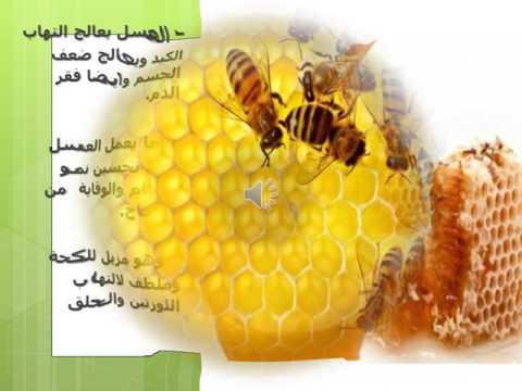 معلومات عن العسل مفيدة