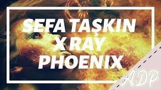 Sefa Taskin X Ray Phoenix
