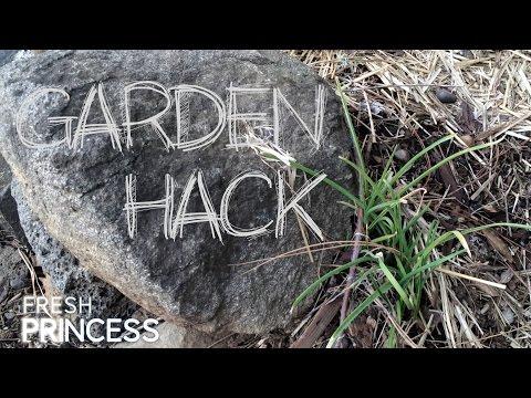 zen garden pro editor v1.3.rar