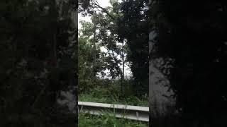 Manejando por Santander Colombia yendo hacia San Vicente de Chucuri y la Represa Hidrosogamoso