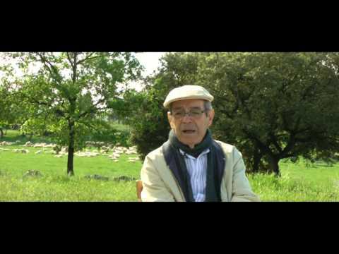 ENTREVISTA A LUIZ CARLOS PINHEIRO MACHADO (1 DE 3)