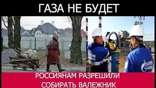 СРОЧНАЯ НОВОСТЬ!!! Валежник для россиян! Газа не ждите!