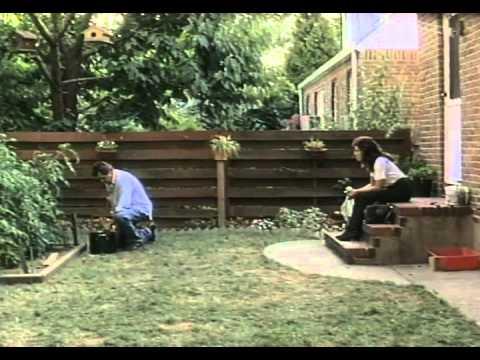 Murdered Innocence Trailer 1994