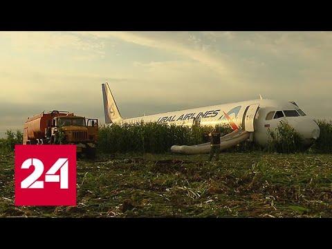 Расшифровка черных ящиков аварийно севшего в Подмосковье лайнера займет 3 дня - Россия 24
