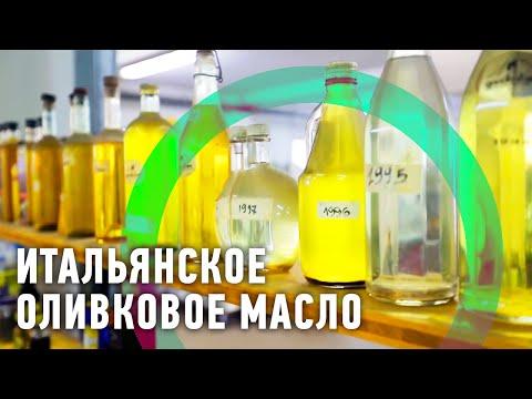 Производители оливкового масла. Самое лучшее оливковое