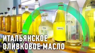 Пожалуй, лучшее оливковое масло Италии(Как собирают оливки и делают масло из них? Покажем и попробуем настоящее свежее итальянское оливковое масл..., 2016-08-25T09:00:01.000Z)