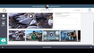 Видео урок 4: Экскурсия по Connect DashBoard Talk Fusion