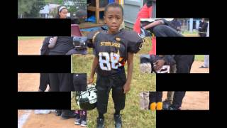 2015 lamond riggs steelers tiny mites football team