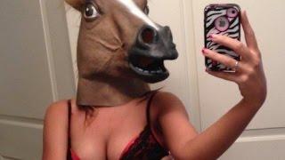 ЛУЧШИЕ ПРИКОЛЫ с Лошадьми  Смешные видео про лошади и кони Подборка смешных подборок на ПРИКОЛЫ ТВ