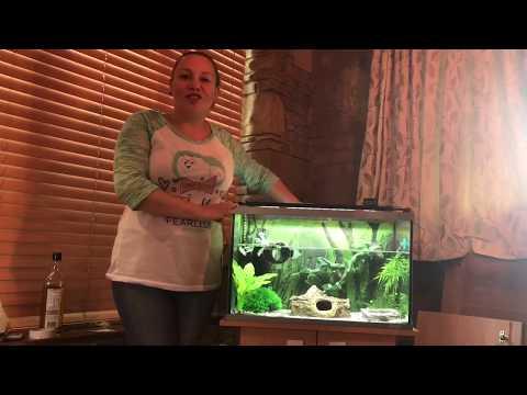 Attaching Aquarium Background With Oil