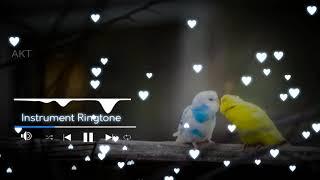 Soch Na Sake || Instrumental Ringtone || Airlift || AKT || Download Now!