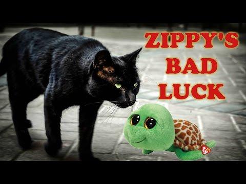 Zippy's Bad Luck