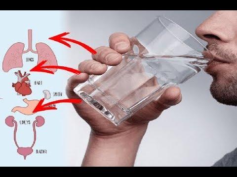 ماذا يفعل شرب الماء الساخن على معدة فارغة وماذا تقول الدراسات الطبية شيء عجيب!