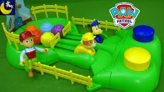 Paw Patrol Toys and Games Pup Racers Surprise Box Puzzle Funny Video for Kids Chase and Rubble Toys