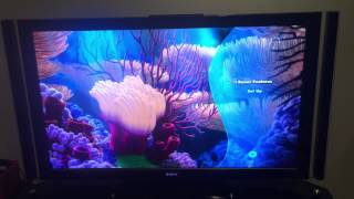 PIXAR 5b. Finding Nemo Blu-ray (Disc 2) Menu