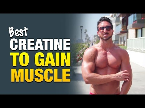 best-creatine-supplement-for-guys-who-want-to-gain-weight-&-build-muscle
