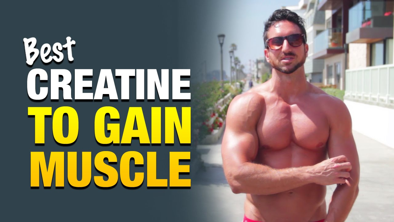 best creatine supplement for guys who want to gain weight & build