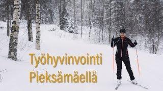Hallintojohtaja Ulla Nykäsen ajatuksia työhyvinvoinnista
