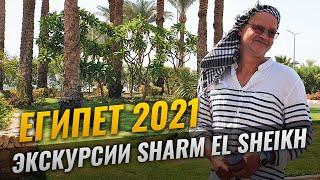 Египет 2021 I Экскурсия Шарм эль Шейх с русским гидом