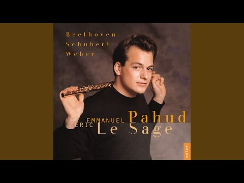 Serenade For Flute And Piano In D Major, Op. 41: IV. Andante Con Variazioni