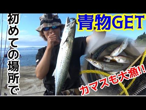 #4 車で釣りの旅!佐賀~東京 2日目カマスが爆釣!青物も