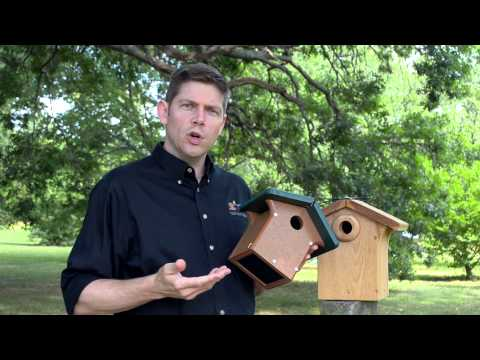 How to Choose the Best Nest Box for Your Birds