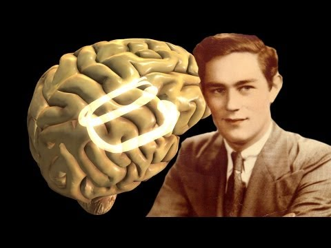 """Looking Deeper Into the Brain of """"H.M.,"""" Our Most Famous Amnesiac"""