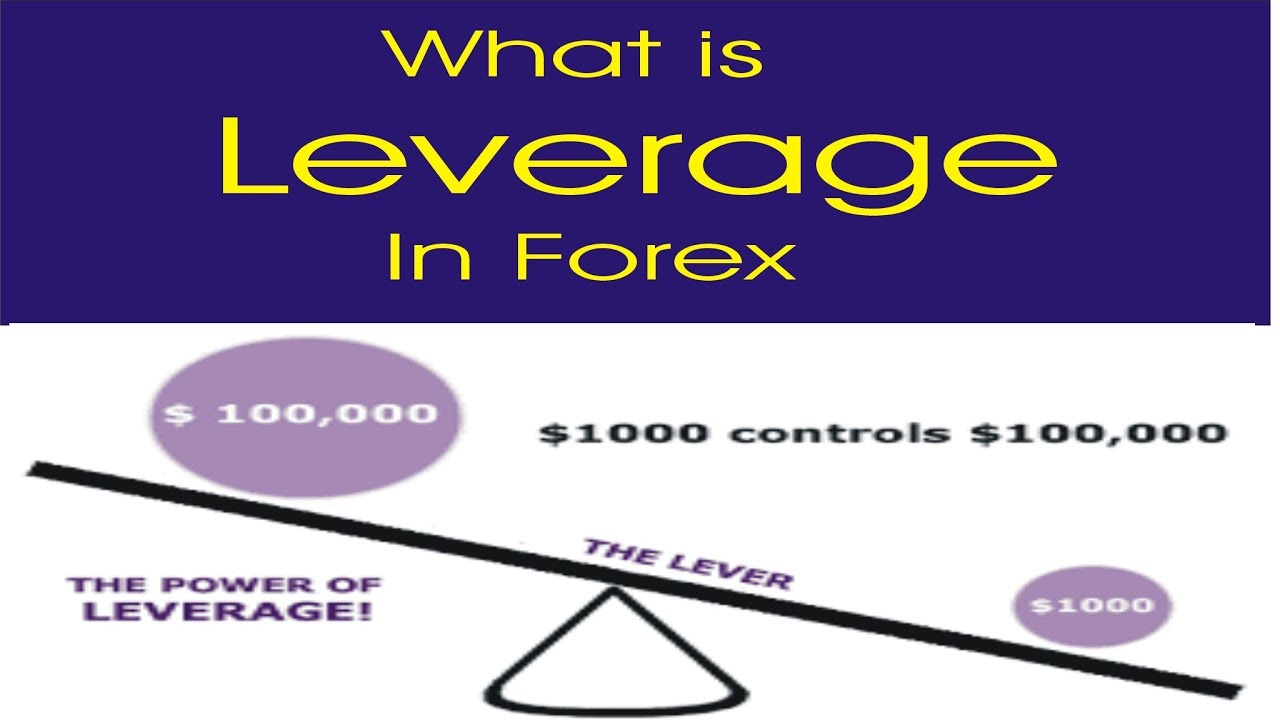 What is the best leverage in forex trading