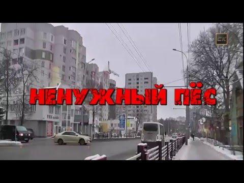 Ненужный пёс - NEW 2016 - Юлия Шатунова - радио версия
