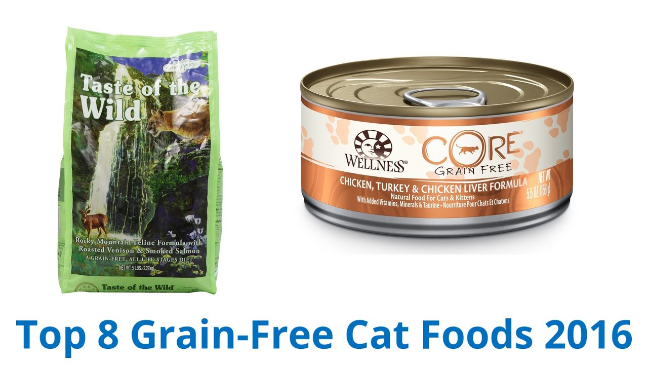 8 Best Grain Free Cat Foods 2016 Funnydog Tv