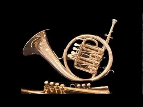 Johann Baptist Georg Neruda - Konzert für Horn & Streicher in Es-Dur - erster Satz (Allegro)