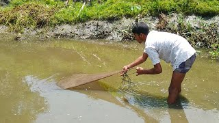 Best Net Fishing ll Big Fish Hunting Using by Cast Net in The Beautiful Village Pond