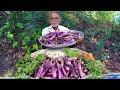 Brinjal Curry | Easy Eggplant Recipe | Spicy Baingan Masala Recipe By Our Grandpa
