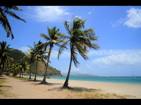 St Kitts in 60 Seconds