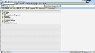 SAP tutorial for How to navigate in SAP ERP