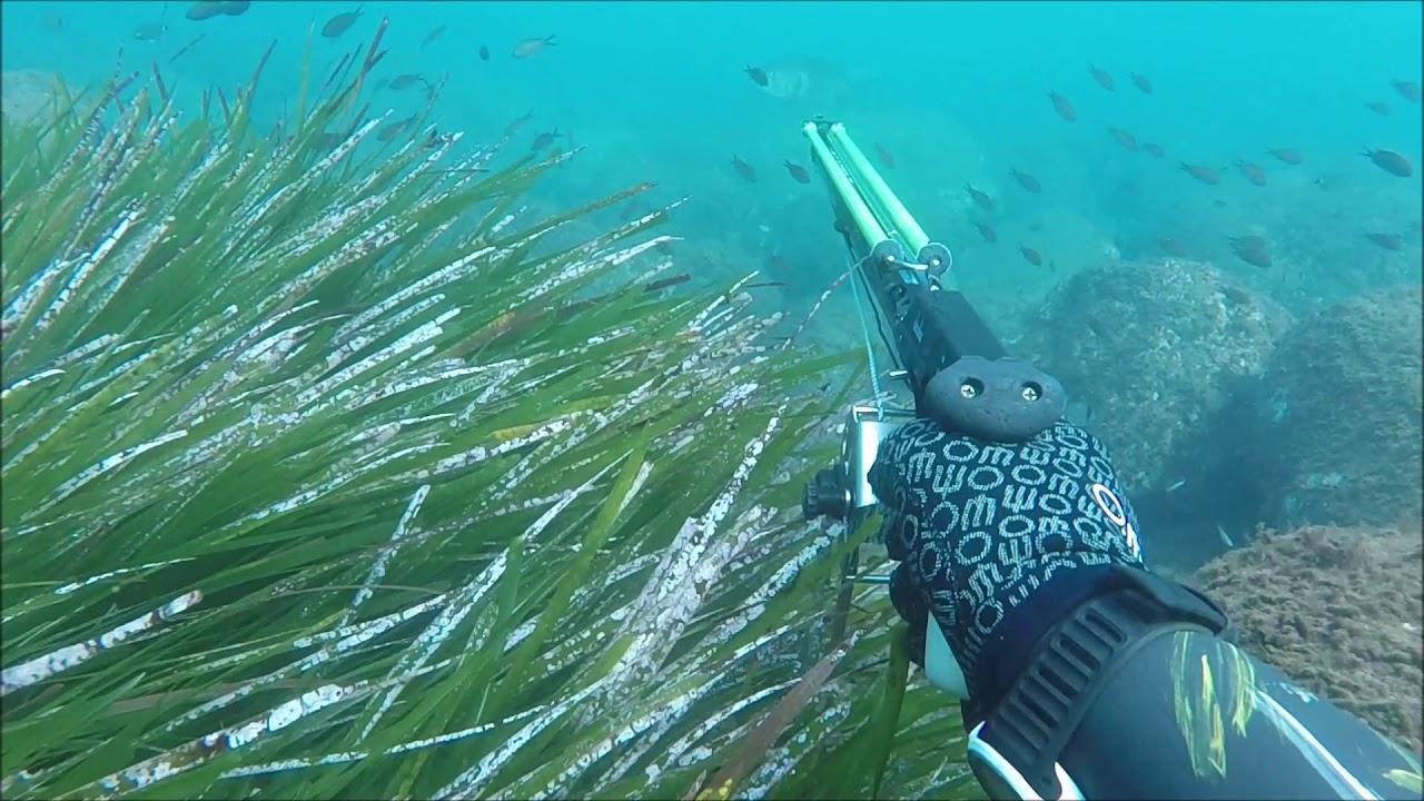 8e428e251f Υποβρύχιο ψάρεμα τον χειμώνα - YouTube