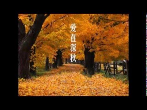 愛在深秋 - YouTube