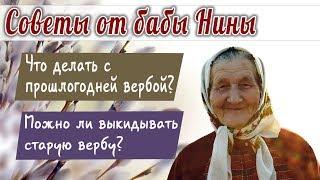 Баба Нина - Вербное воскресенье! Что делать с прошлогодней вербой?