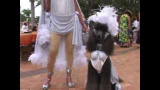 Howl-O-Ween (Dog costume parade in Sarasota, Florida)